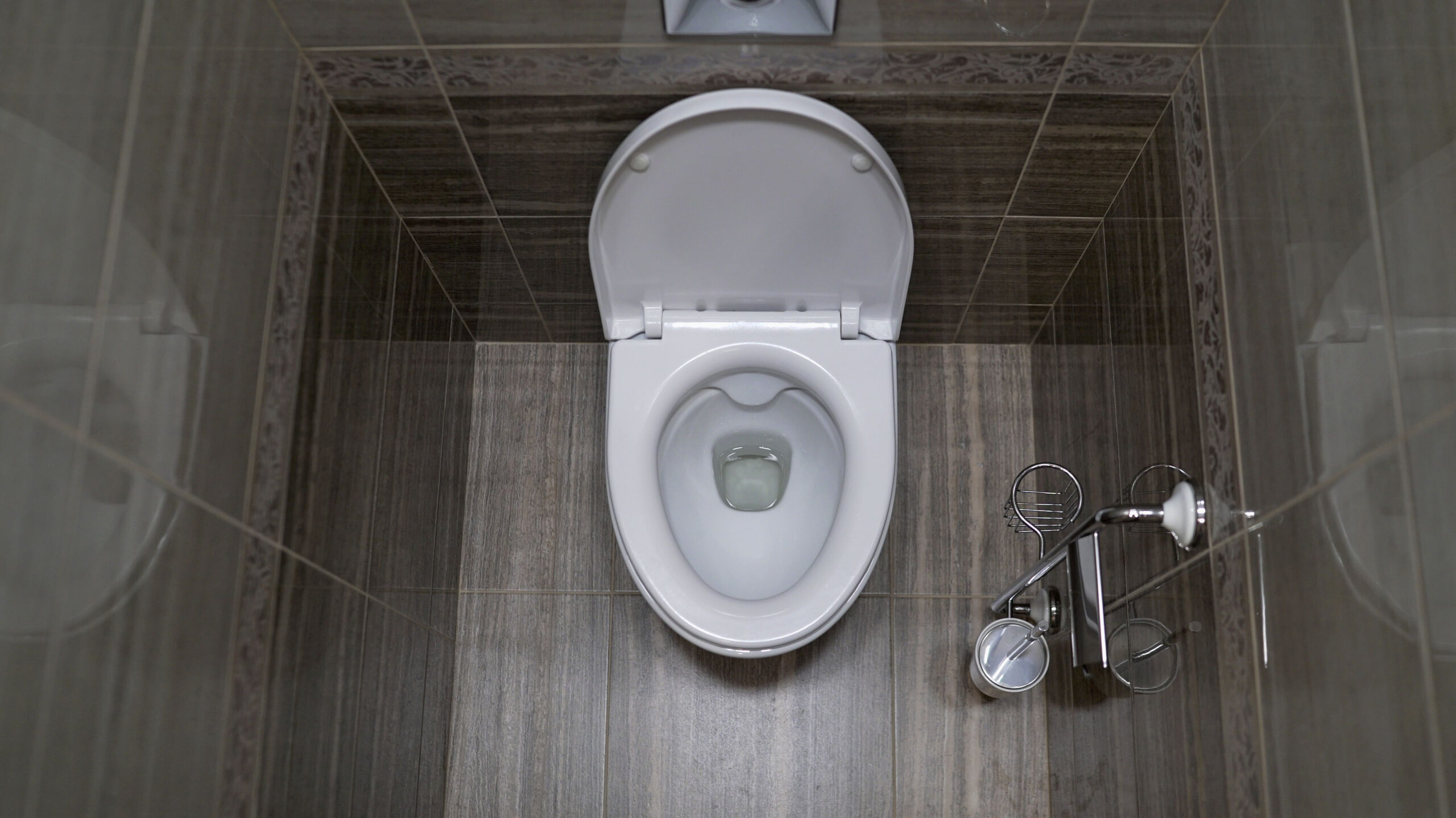Ever dropped your car keys down the toilet?